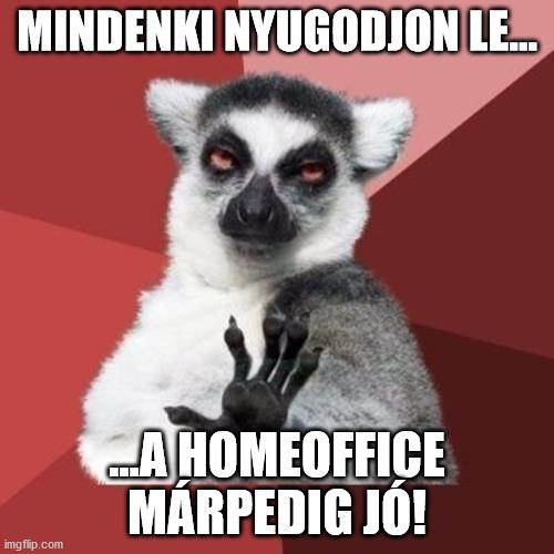 maki_homeoffice